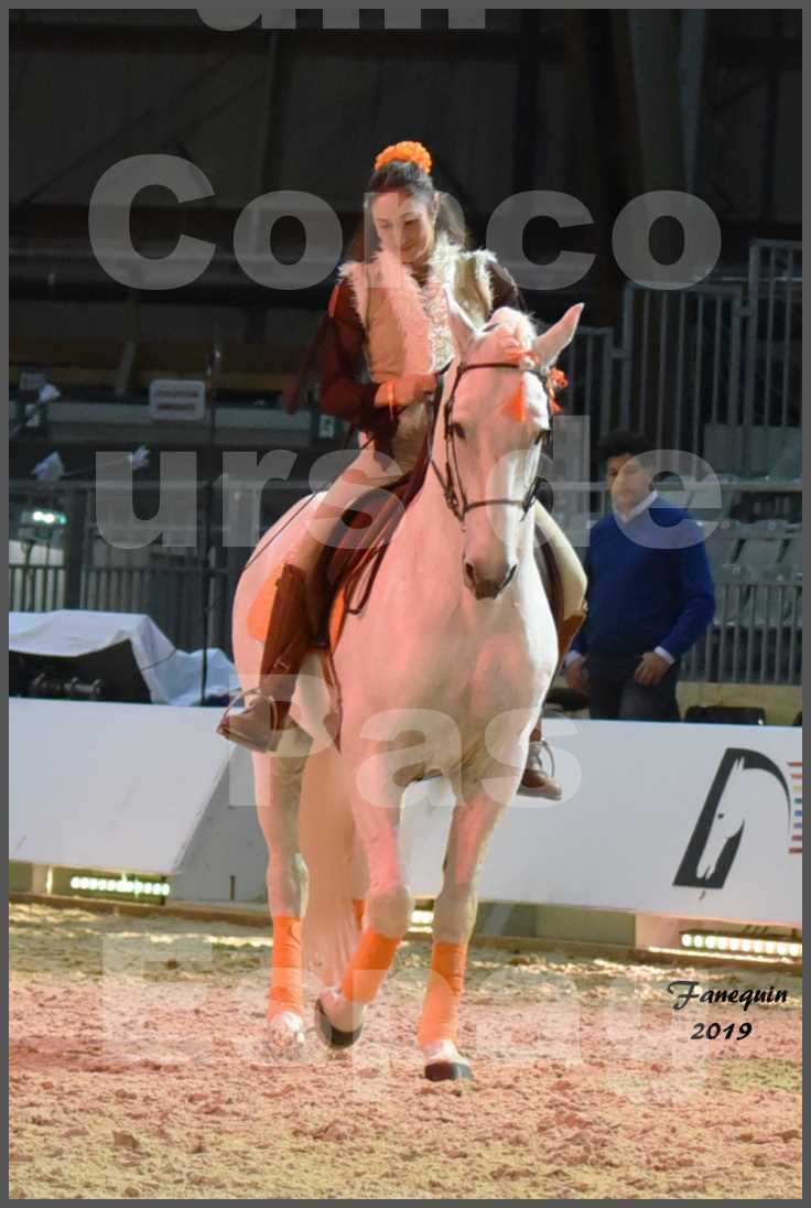 """Cheval Passion 2019 - Concours de Pas Espagnol - Étalon """"ZIDANE"""" - 14"""