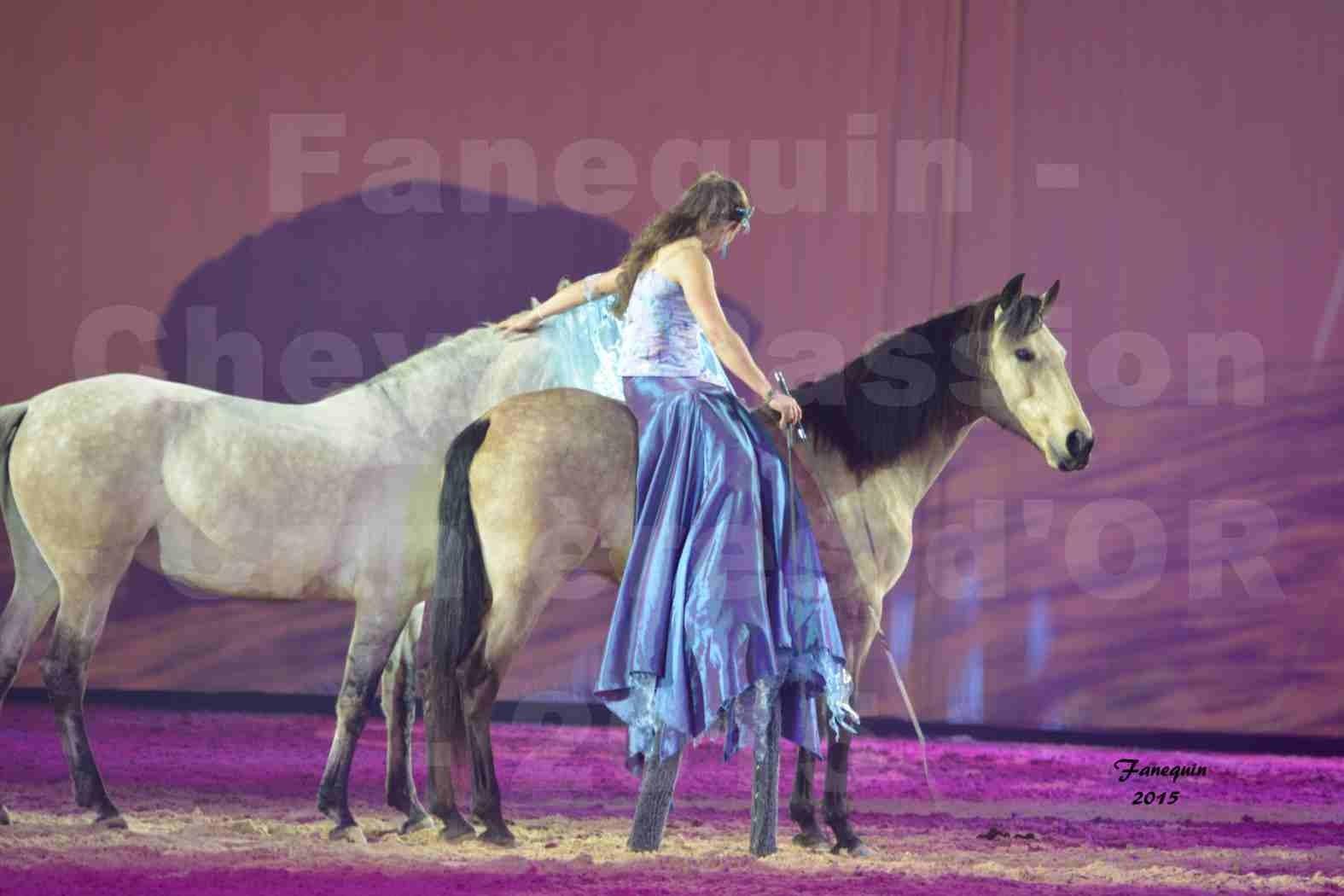 Cheval Passion 2015 - Spectacle des Crinières d'OR - Lucie VAUTHIER & 2 chevaux en liberté - 11