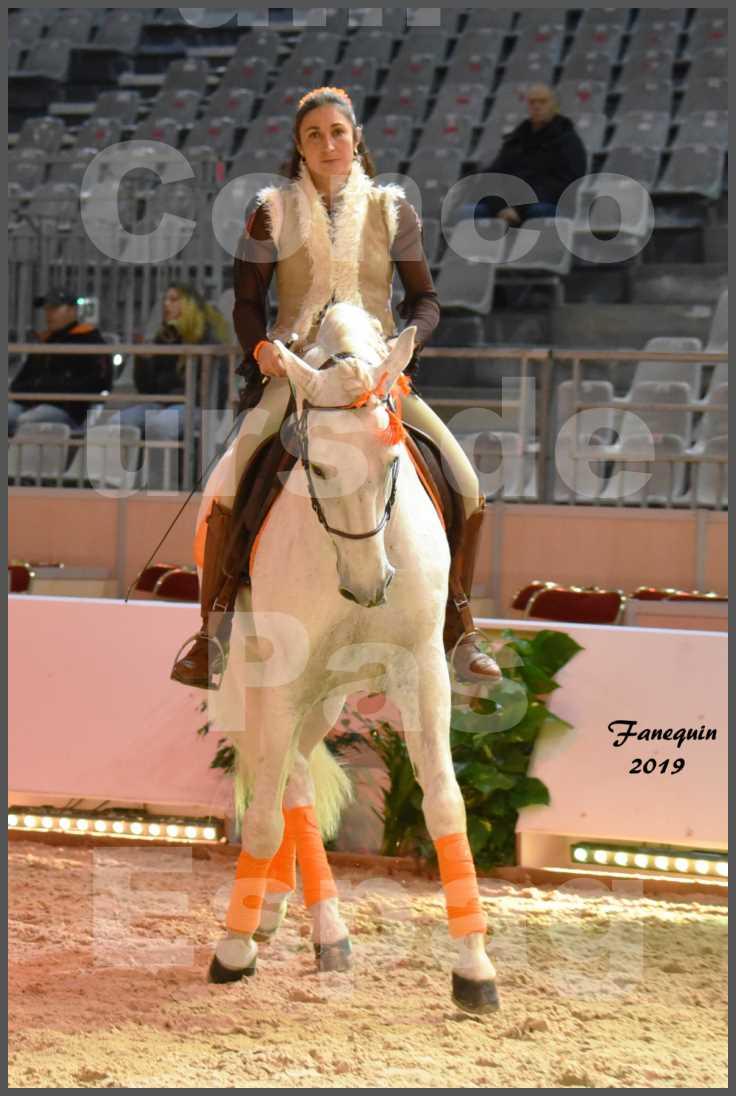 """Cheval Passion 2019 - Concours de Pas Espagnol - Étalon """"ZIDANE"""" - 07"""