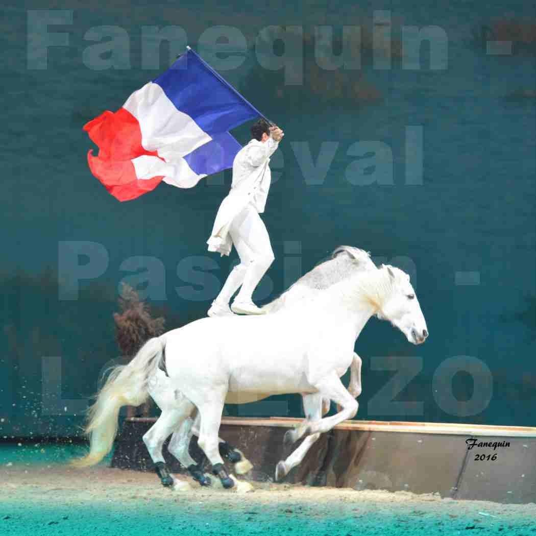 """Cheval Passion 2016 - Spectacle les Crinières d'OR - LORENZO """"Blanc"""" - représentation du 23 janvier 2016 - 02"""