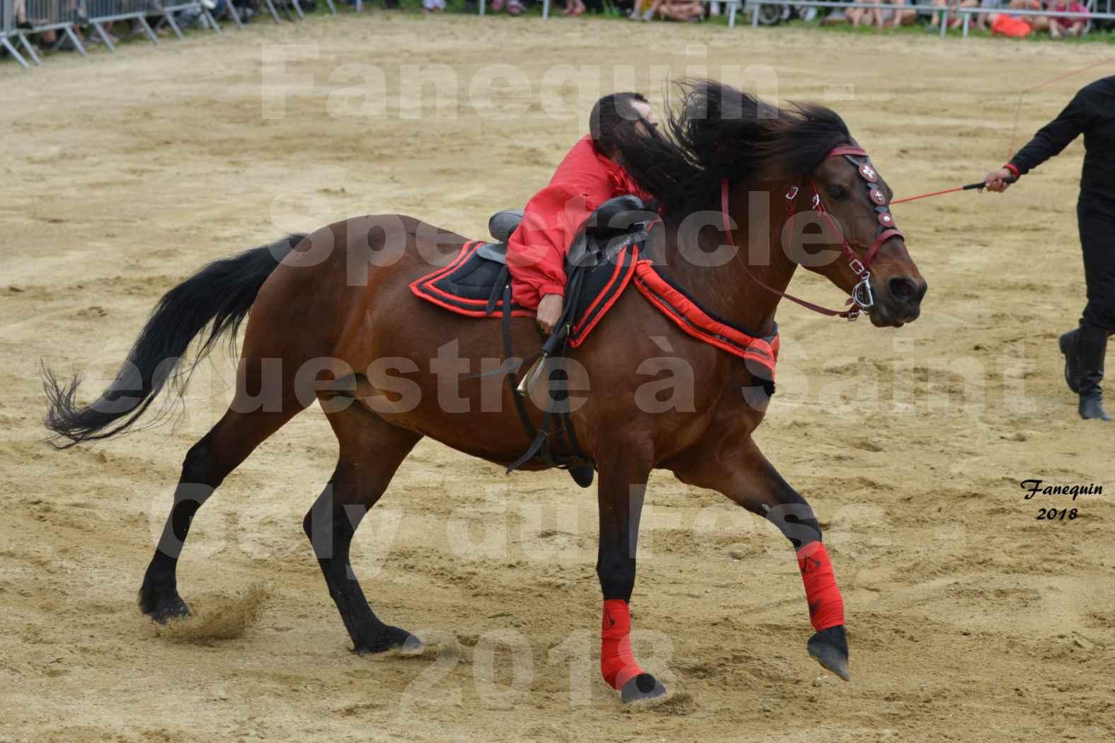 Spectacle Équestre le 3 juin 2018 à Saint Gély du Fesc - Voltige équestre - Troupe de Jean Antoine FIRMIN - 50