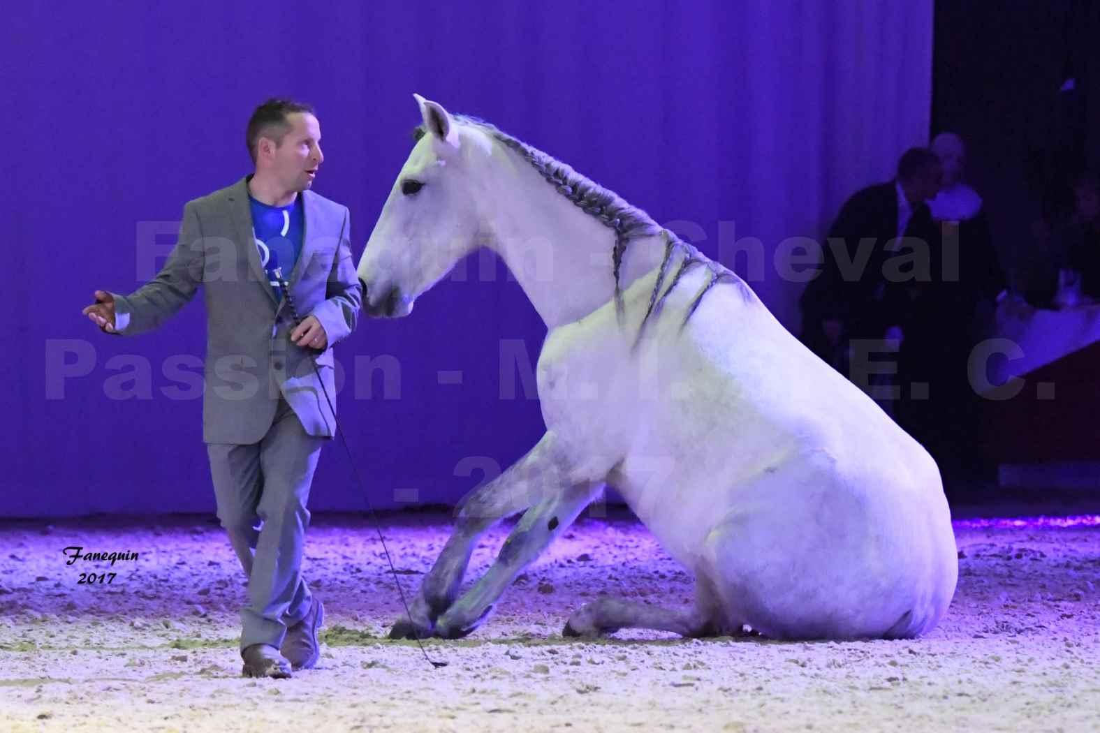 Cheval Passion 2017 - M. I. S. E. C. - Ludovic LONGO & 1 cheval en liberté - 15