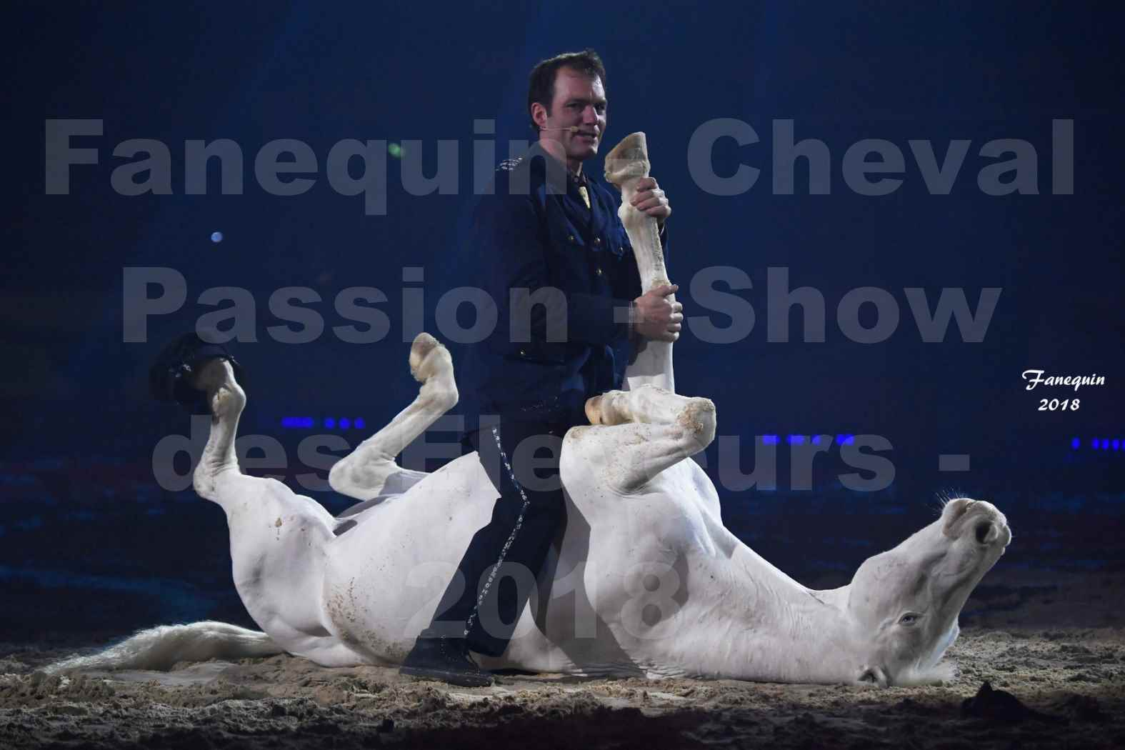 Cheval Passion 2018 - Spectacle les Crinières d'OR - Le FACTEUR 3 - 07