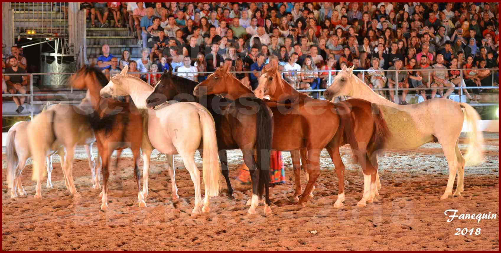 """Spectacles Équestres des """"Nuits Équestres""""  de la Féria de BÉZIERS 2018 - Sylvie WILLMS & ses chevaux en liberté - 12"""