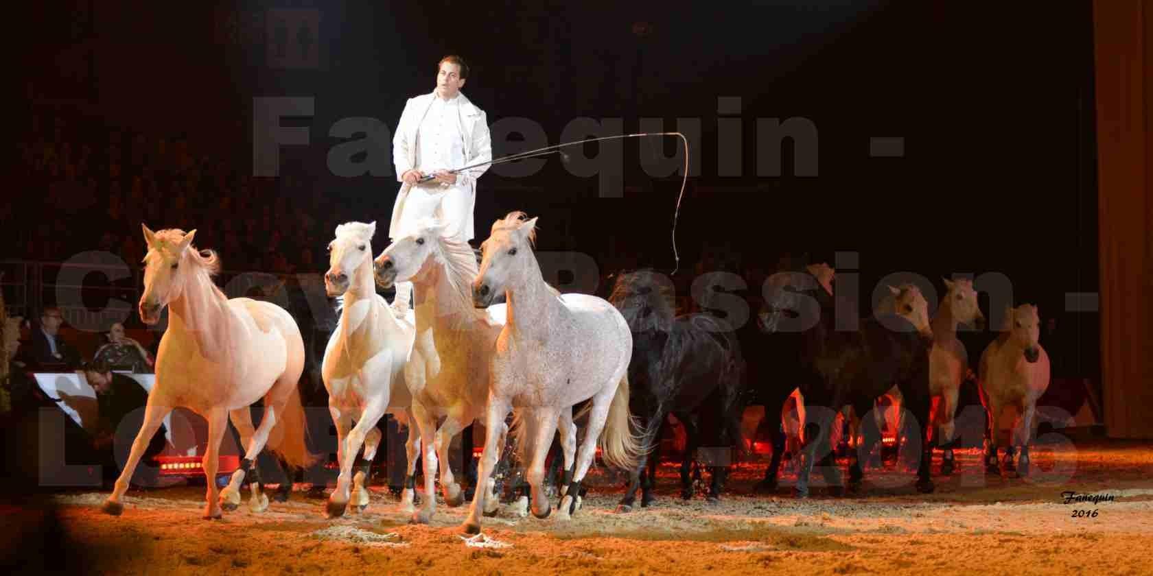 """Cheval Passion 2016 - Spectacle les Crinières d'OR - LORENZO """"Blanc"""" - représentation du 20 janvier 2016 - 34"""