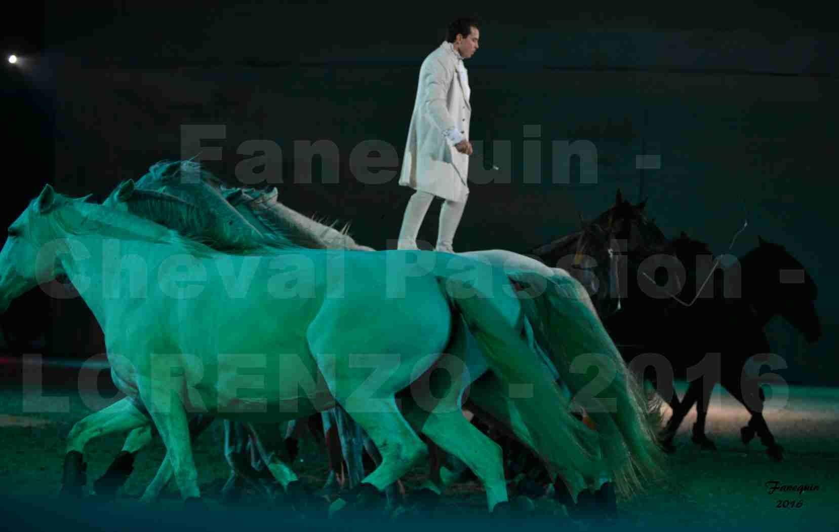 """Cheval Passion 2016 - Spectacle les Crinières d'OR - LORENZO """"Blanc"""" - représentation du 20 janvier 2016 - 23"""