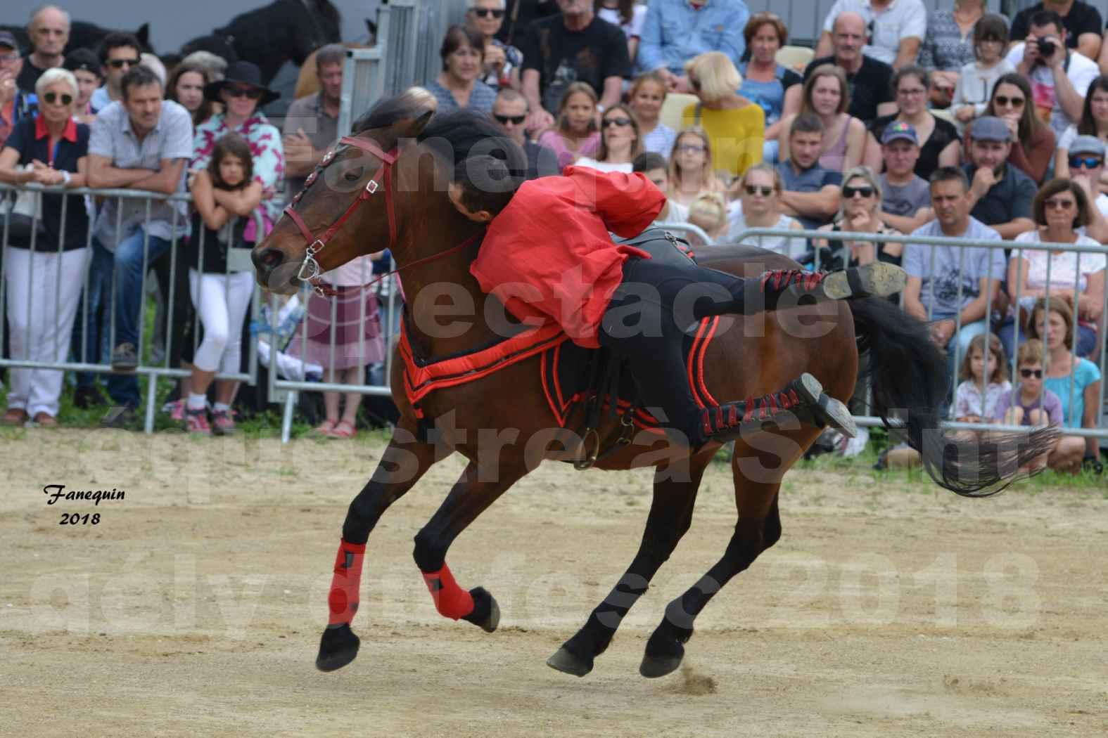 Spectacle Équestre le 3 juin 2018 à Saint Gély du Fesc - Voltige équestre - Troupe de Jean Antoine FIRMIN - 69