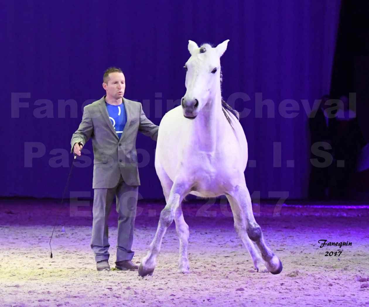 Cheval Passion 2017 - M. I. S. E. C. - Ludovic LONGO & 1 cheval en liberté - 08