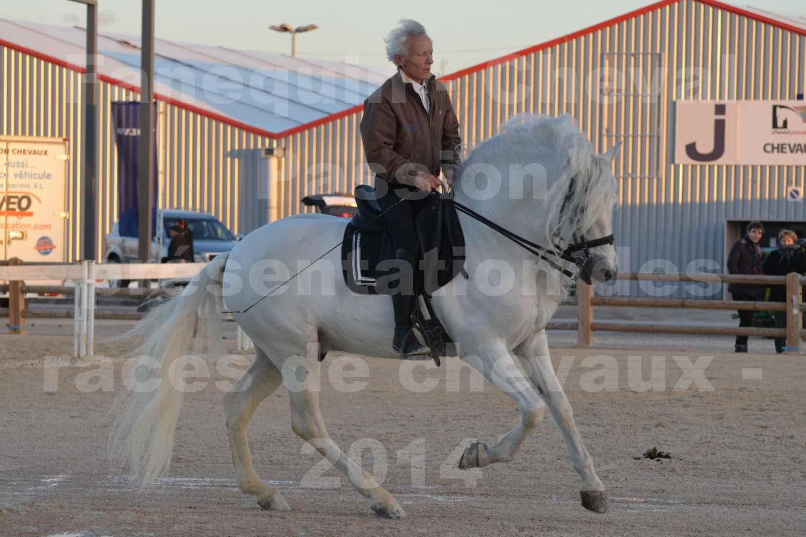 """Cheval Passion 2014 - Etalon """"GALAN""""  blanc écurie Alain LAUZIER - Notre Sélection - 16"""