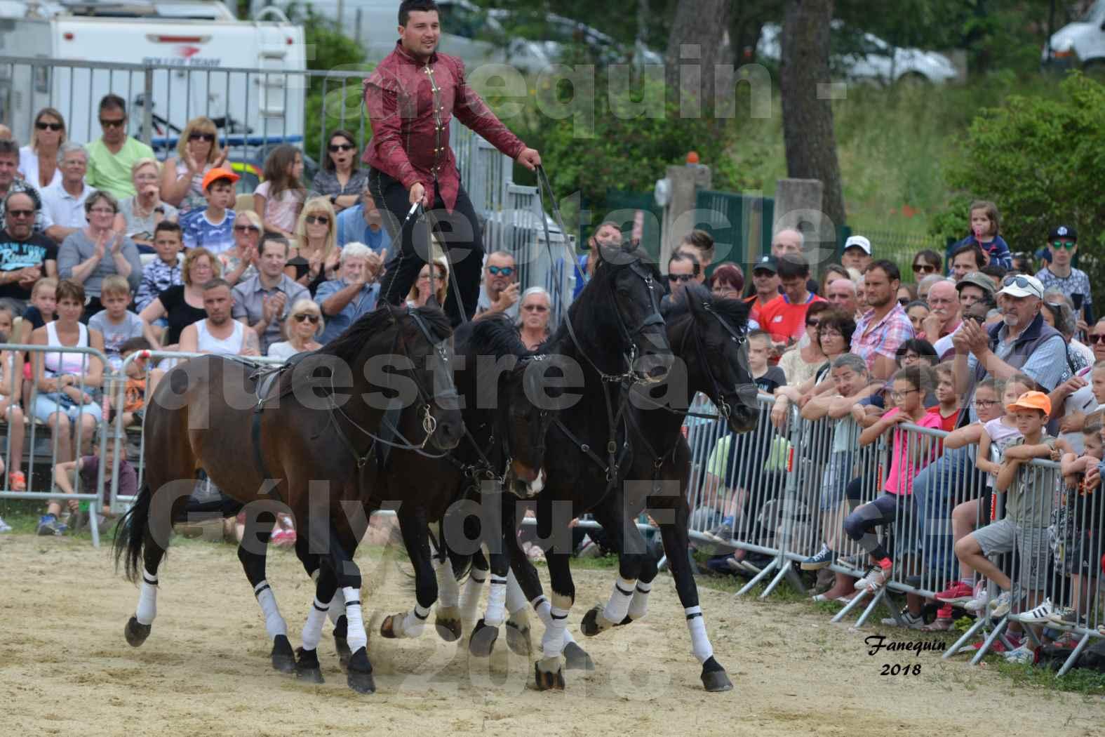 Spectacle Équestre le 3 juin 2018 à Saint Gély du Fesc - Poste Hongroise de 2 à 6 chevaux - Benoît SOUMILLE - 03