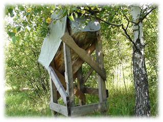 麗塔的蜂巢