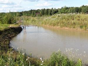 德米特里以樸門永續設計方式挖的湖