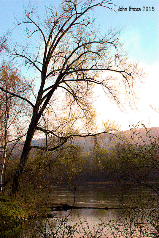 Connecticut River Morning