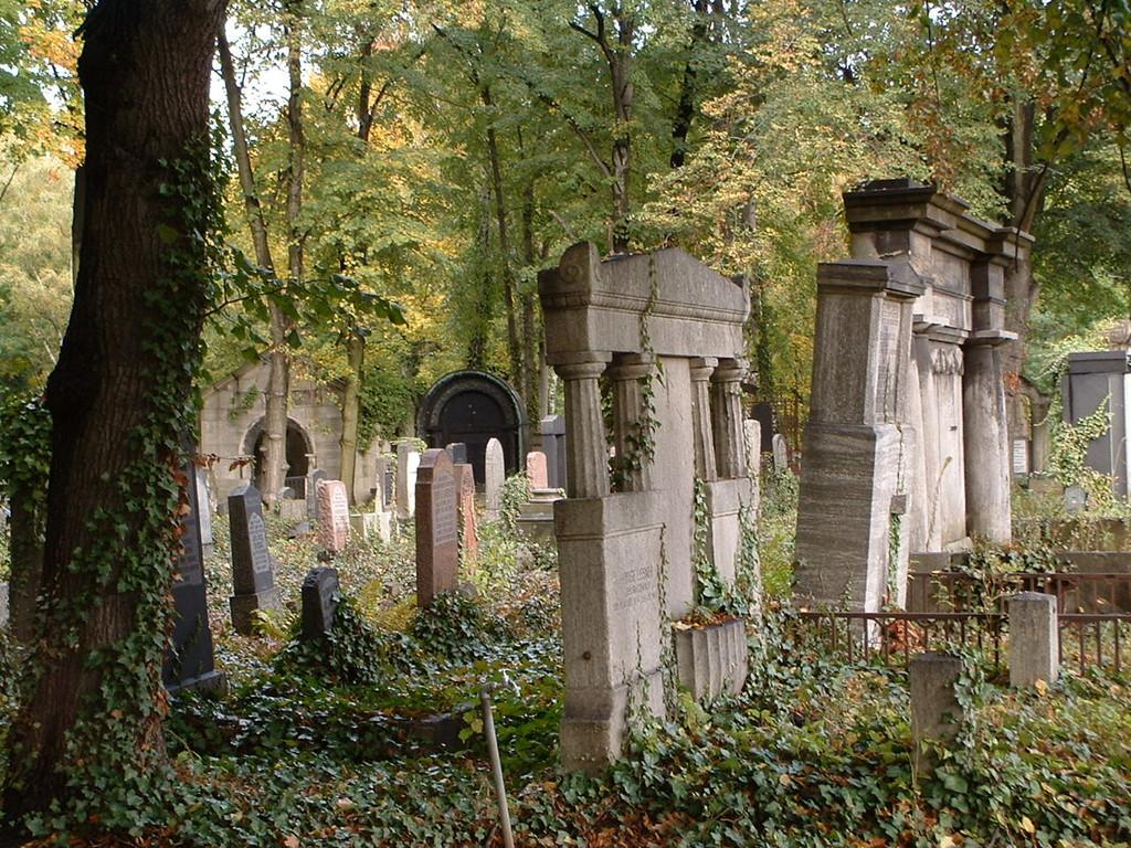 wurde während der Weihnachtsfeiertage ein Friedhof im Garten gebaut