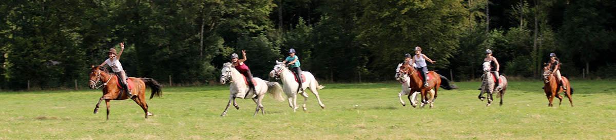 Stage d'équitation, balades au galop