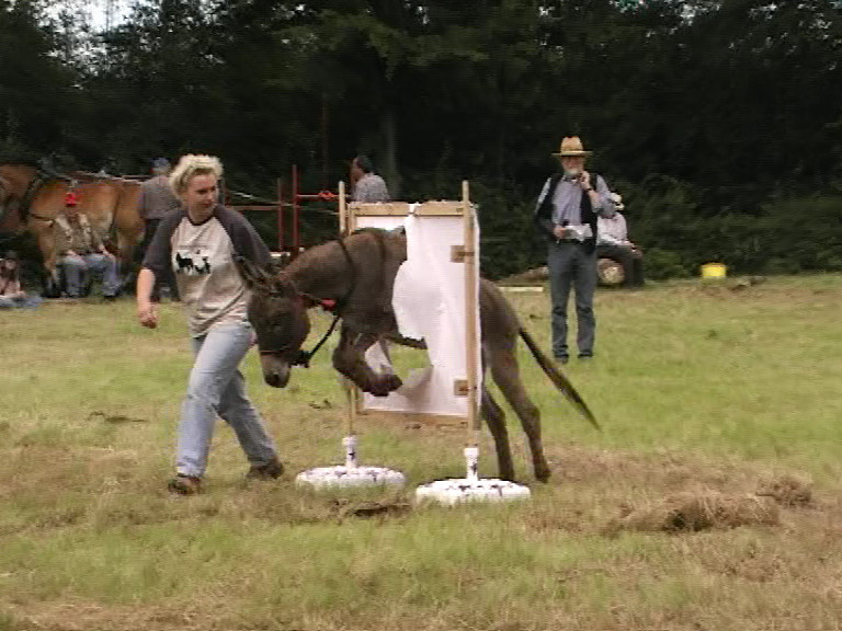 (L) Beschfest, Sommer 2007