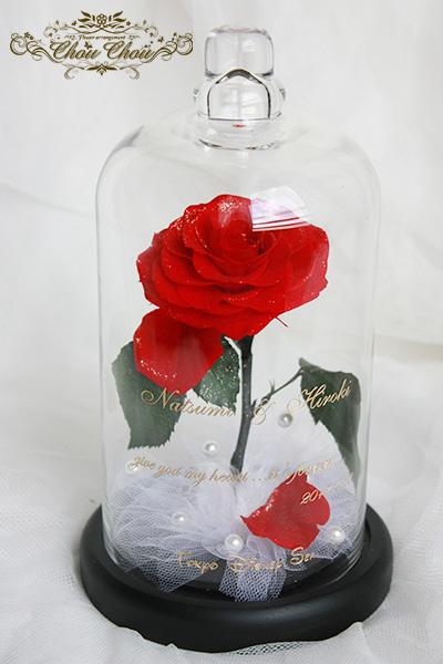 プロポーズの一輪の薔薇 order no 201729