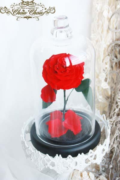 ディズニープロポーズ ミラコスタ アンバサダー ホテル 配達無料 プリザーブドフラワー 美女と野獣 一輪の薔薇 ガラスドーム  オーダーフラワー  シュシュ chouchou 舞浜 浦安 花屋