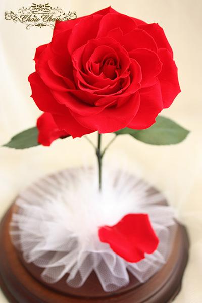 美女と野獣 一輪のバラ ガラスドーム  プリザーブドフラワー ローズドーム ゴールド 刻印 オーダーフラワー  シュシュ chouchou