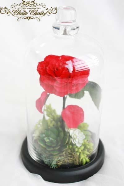 ロポーズ プレゼント 薔薇 多肉 美女と野獣 魔法の薔薇 ガラスドーム  ディズニー オーダーフラワー  サプライズ シュシュ 舞浜 浦安 花屋