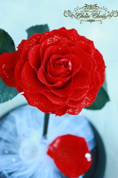 ディズニー クリスマス サプライズプレゼント 美女と野獣 一輪の薔薇 ガラスドーム ディズニーランドホテル スワロフスキー
