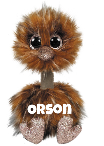 """Orson hat am 7. April Geburtstag. """"I can't fly, but I can run Outlasting almost anyone I am the biggest bird alive My long legs and neck help me survive!"""""""