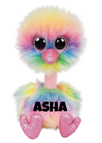 """Asha hat am 9. Februar Geburtstag. """"I'm a rainbow of colors With feathers so bright With blues, pinks, and yellows I'm a beautiful sight!"""""""