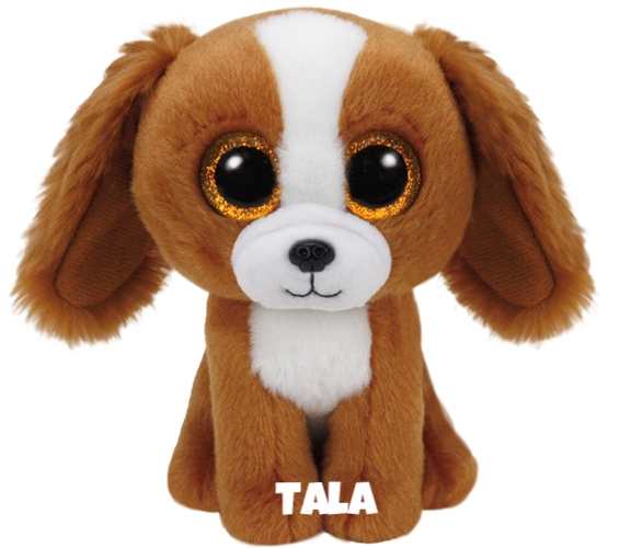 """Tala is op 9 oktober jarig. """"I'm a smart dog, I can rollover and crawl / And I will fetch when you throw the ball!"""""""