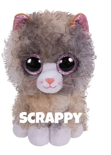 """Scrappy hat am 16. Oktober Geburtstag. """"I'm a cat whose fur is curly Some would even say it's swirly!"""""""