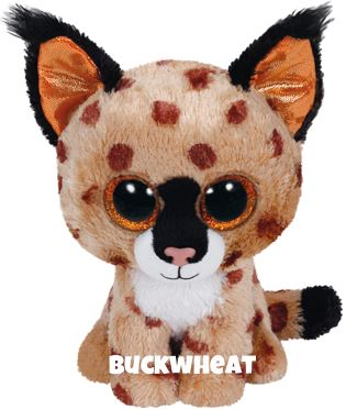 "Buckwheat is op 14 september jarig. ""My ears are big with fluffy fur / Hold me close and hear me purr"""