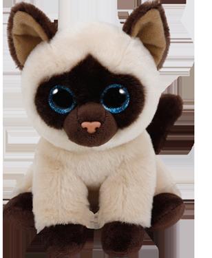"Jaden hat am 13. Februar Geburtstag. ""Catnip is my favorite thing / I love it even more than string!"""