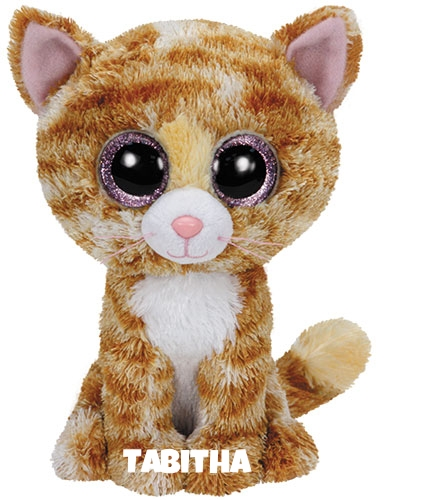 """Tabitha hat am 17. Dezember Geburtstag. """"I can be your fluffy cat / Cause I'm so pretty just to look at !"""""""