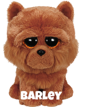 "Barley is op 24 augustus jarig. ""I have a cute and fluffy face / Please take me home, that's the right place."""