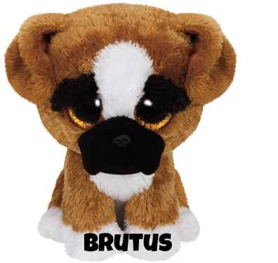 "Brutus is op 2 september jarig. ""You'll never know how much I care / I'll give you big licks and follow you everywhere!"""