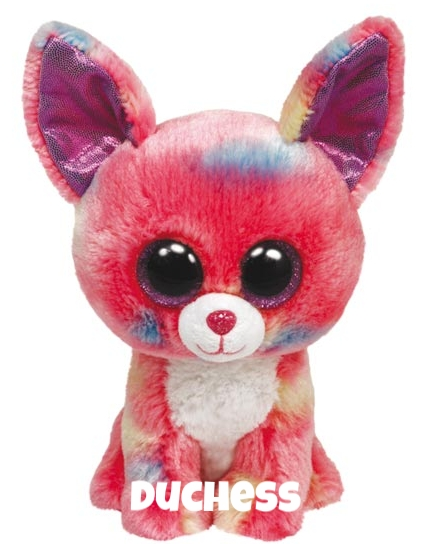 "Duchess (Cancun) is op 12 januari jarig. ""I'm a Chihuahua with lots of flare / I have sparkly eyes and rainbow hair!"""