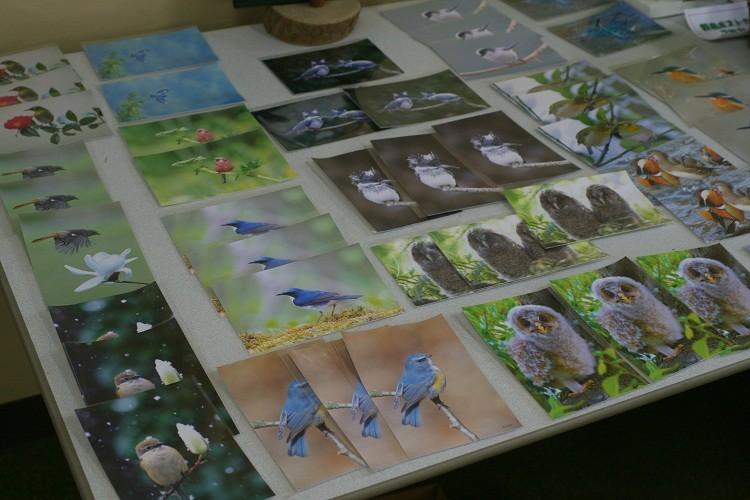後藤さんのポストカード