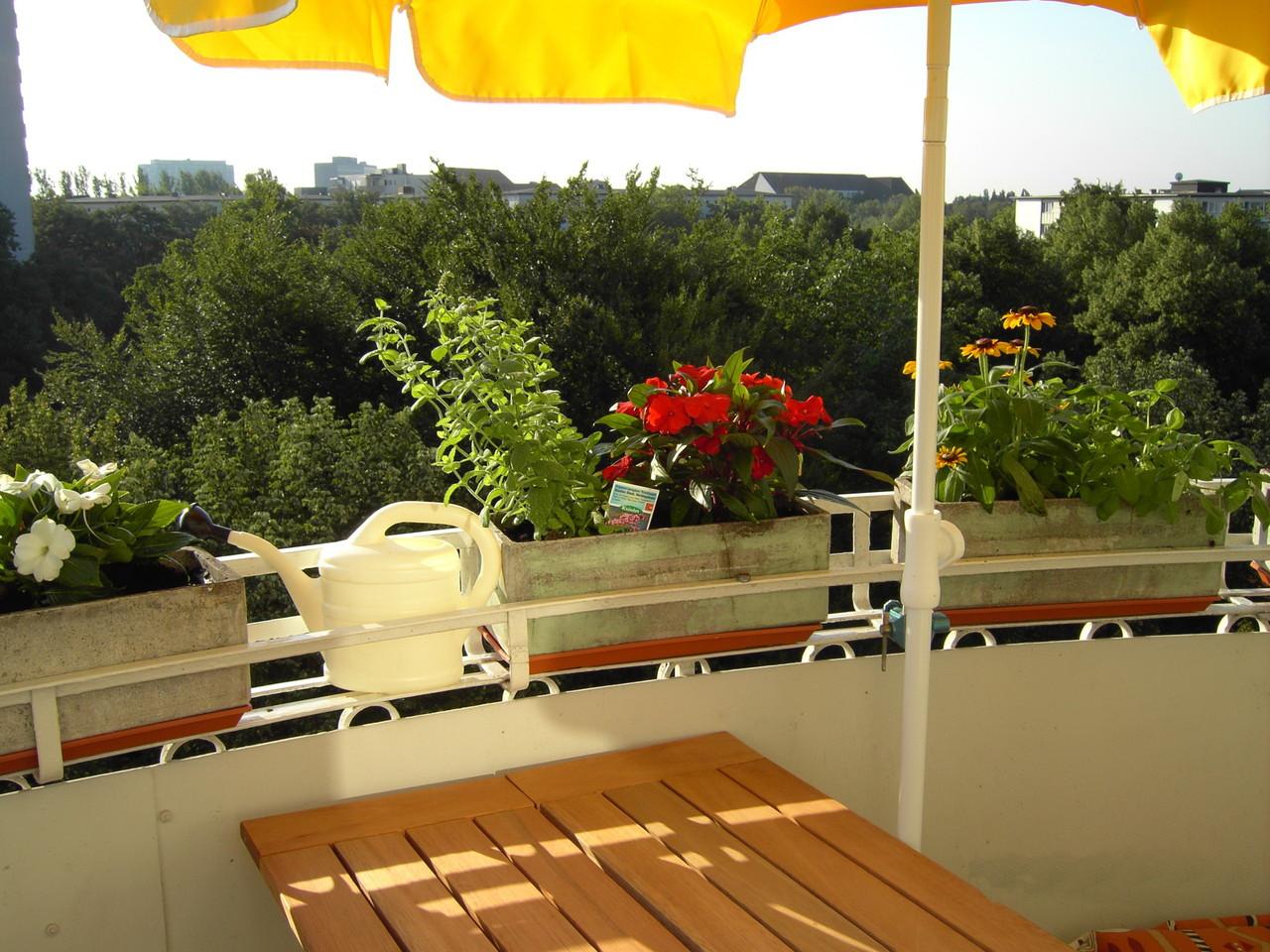 Mein kleiner Balkon in der J.-Georgstraße