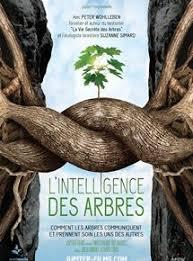 L'intelligence des arbres avec un débat avec l'association ACCOB d'Oloron Ste Marie