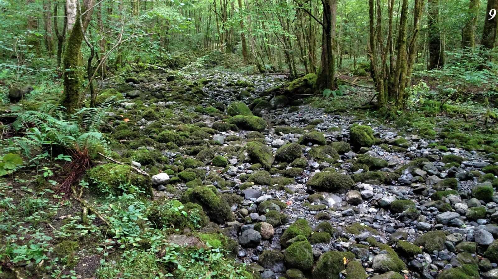 Rivière l'Ourtau asséchée durant plusieurs mois de l'année, du à un terrible gaspillage : aucune régulation sur la prise d'eau de la ville d'Oloron