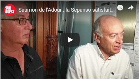 Salmo Tierra, Sepanso ont gagné. Pêche interdite dans le port de Bayonne-ACCOB