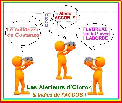 Indics, espions en forêt d'Oloron et Soeix pour défendre la nature.