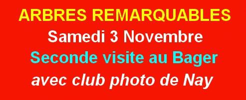 Sortie photo avec le club du Pays de Nay en forêt du Bager d'Oloron et ses arbres remarquables samedi 3 novembre 2018, accompagnés par l'ACCOB
