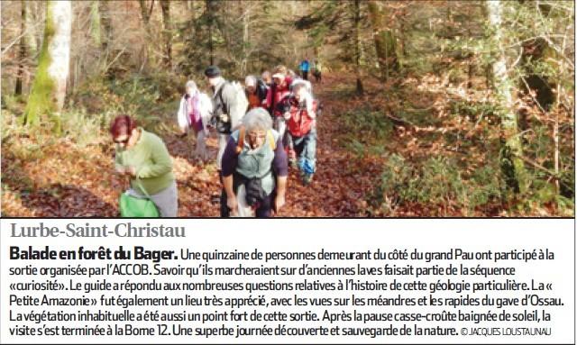 Randonnée en forêt du Bager d'Oloron pour un groupe de marcheurs de Pau
