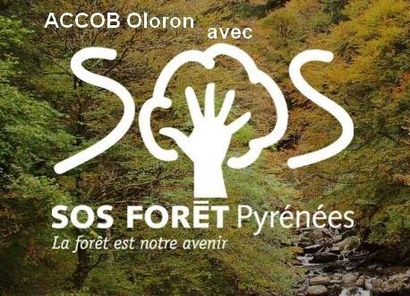 L'ACCOB(association de défense de la nature) Oloron membre de SOS Forêt Pyrénées, la forêt est notre avenir.