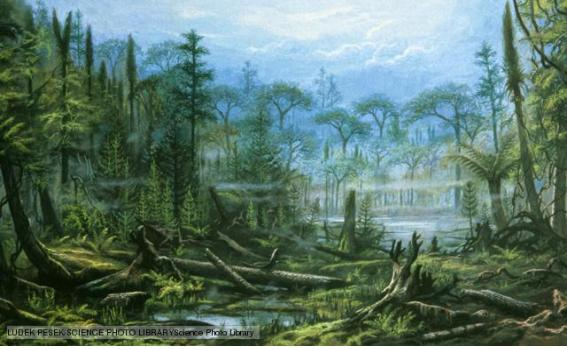 Bärlapp-, Farn- und Schachtelhalm-Wälder zur Karbon-Zeit        (Quelle: http://www.bbc.co.uk/nature/history_of_the_earth/Carboniferous)