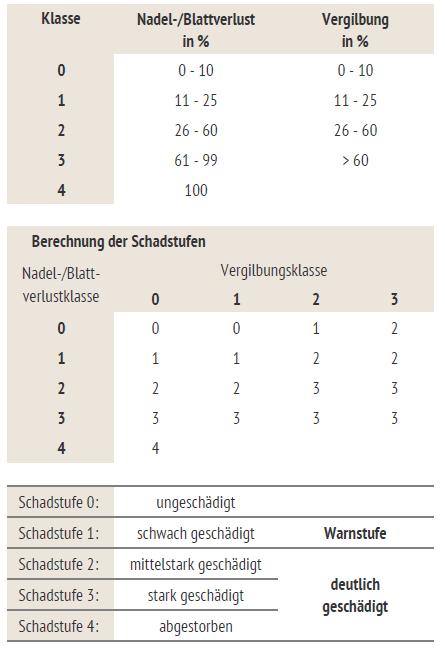 """Berechnung der Schadstufen (aus """"Waldzustandsbericht 2020 Baden-Württemberg)"""