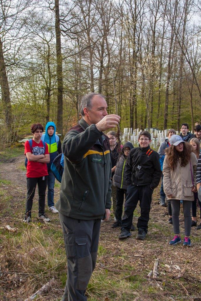 Einführung in die Pflanzaktion durch Förster Reiner Brujmann