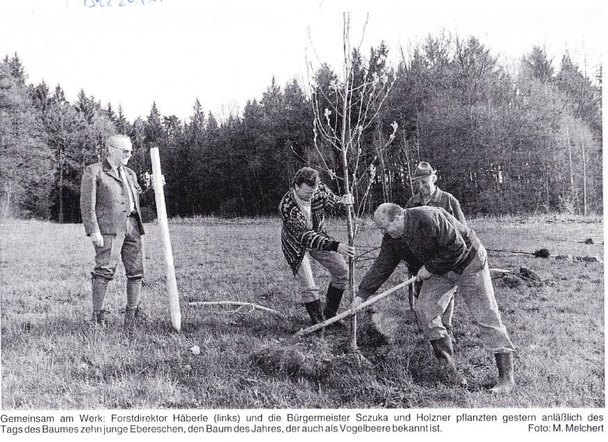 1997: SDW-Pflanzaktion zum Tag des Baumes (v.l. FDir Wolfgang Häberle, SDW-Vors. BM Reinhold Sczuka / Althütte, BM Hermann Holzner / Welzheim