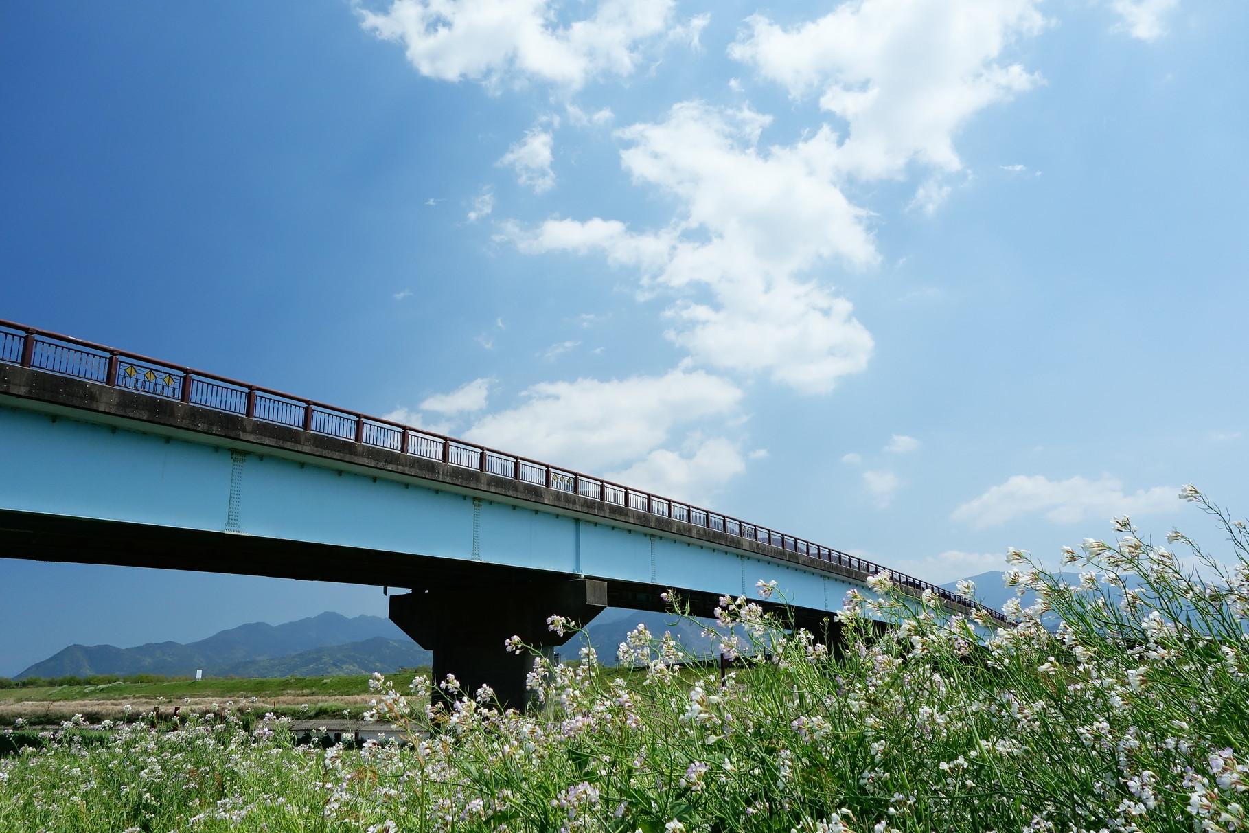 高良橋の下から。気持ちの良い陽気でした。