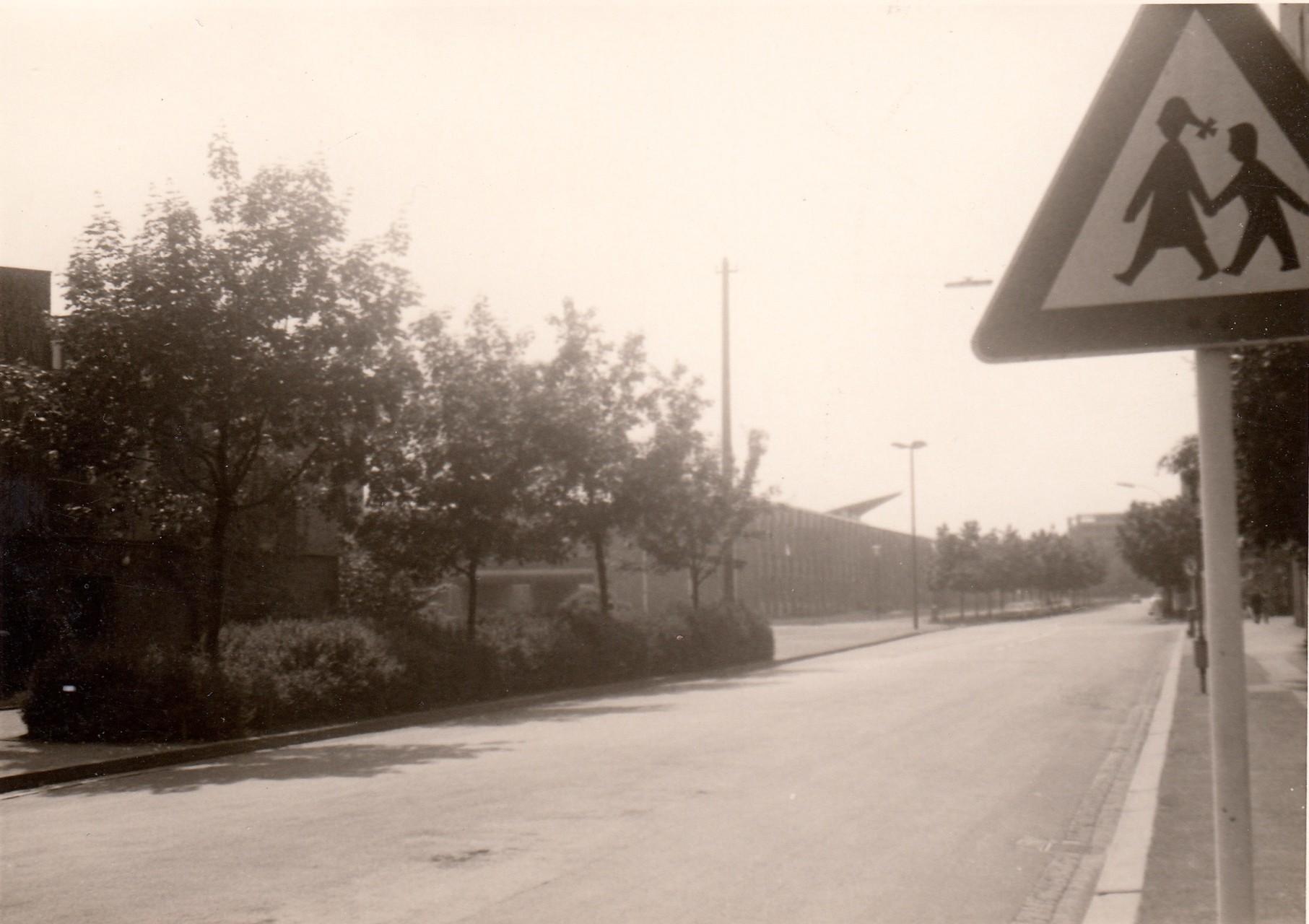 Ignatz-Schön-Str. mit Polytechnikum
